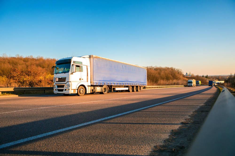 ¿Qué empresa de transporte internacional elijo?